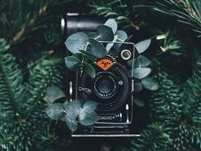 Free Close-up Of Camera Stock Photography - 88264032