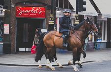 Free Mounted Police, London, England Royalty Free Stock Images - 88264979