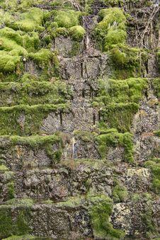 Free Mystery Waterfall Stock Image - 8834201