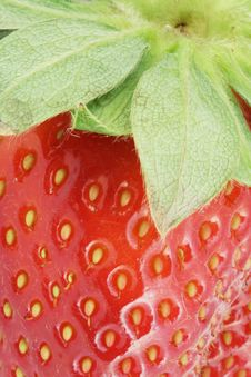 Free The Close-up Fragment Of Ripe Strawberry. Royalty Free Stock Photo - 8835365