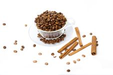 Free Cup With Coffee, Costing On Coffee Grain Stock Photo - 8835610