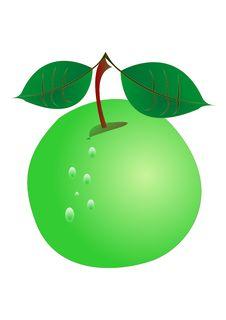 Free Green Apple Royalty Free Stock Photo - 8836245