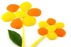 Free Fruit Flowers Royalty Free Stock Image - 8836676