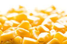 Free Corn Royalty Free Stock Image - 8837806