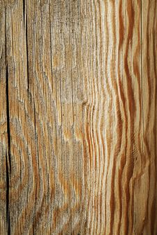 Free Wood Royalty Free Stock Image - 8838416