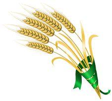 Free Wheat Stock Photos - 8838463