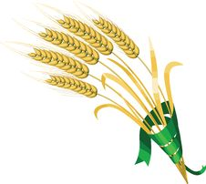 Free Wheat Royalty Free Stock Photography - 8839047