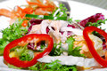 Free Vegetable Salad Series 2 Royalty Free Stock Images - 8840329