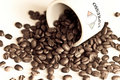 Free Espresso Coffee Beans Royalty Free Stock Photo - 8846735