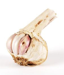 Garlic In A Bad State Stock Images