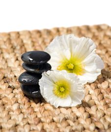 Free Zen Stones With White Flowers Royalty Free Stock Image - 8840726