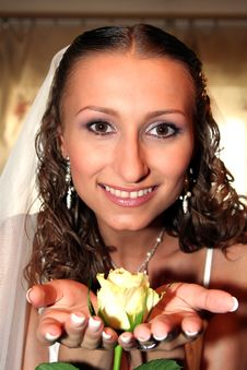 Free Bride Royalty Free Stock Photo - 8844835