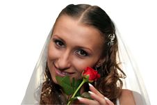 Free Bride Royalty Free Stock Photography - 8844847