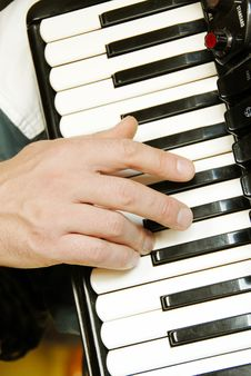 Free Musician Hand Playing Accordion Stock Image - 8845701