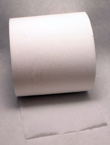 Free Toilet Paper Roll Royalty Free Stock Image - 8847156