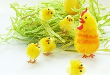 Free Easter Chickens Stock Photography - 8848392