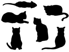 Free Cats Outline Royalty Free Stock Photos - 8849098