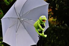 Free Frog Holding An Umbrella Royalty Free Stock Photos - 88490558