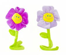 Free Two Smiling Flowers 2 Stock Image - 8850501