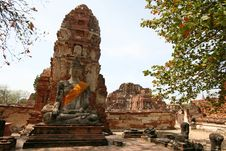 Free Monuments Of Buddah Royalty Free Stock Image - 8853136