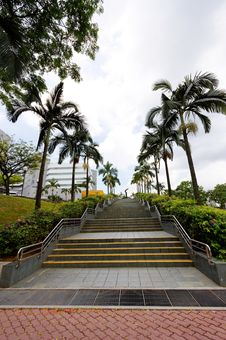 Free Long Flight Of Stairs Lined With Palm Trees Stock Photos - 8854013