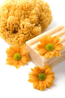 Free Natural Sponge, Soap And Flowers Royalty Free Stock Photography - 8858587