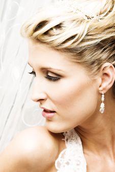 Free Beautiful Bride Stock Photography - 8859792