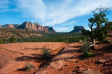 Free Cathedral Rock Trail No. 170 Stock Image - 88560431