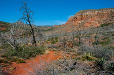 Free Jacks Canyon Trail No. 55 Stock Photos - 88560523