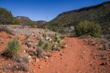 Free Woods Canyon Trail No. 93 Royalty Free Stock Image - 88561126