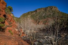 Free Woods Canyon Trail No. 93 Royalty Free Stock Photos - 88561758