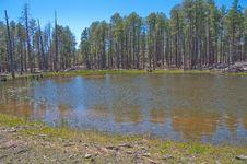 Free Lost Lake Royalty Free Stock Image - 88561836