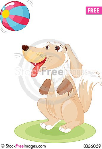 Free Dog Playing Royalty Free Stock Images - 8866059