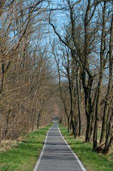 Free Bicycle Way Stock Photos - 8866243