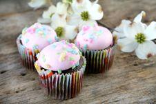 Free Cupcakes Stock Images - 8867084