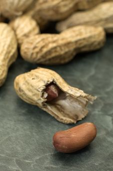 Free Peanuts Stock Photos - 8867793