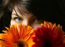 Brunette Woman S Portrait Royalty Free Stock Image