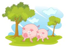 Free Pigs Stock Photography - 8869972