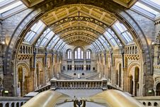 Free Natural History Museum Royalty Free Stock Photography - 88692277
