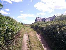 Free 212 - Parc National De L Île-Bonaventure-et-du-Rocher-Percé : Sentier Chemin-du-Roy Stock Images - 88692844