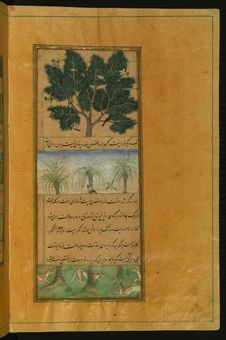 Free Illuminated Manuscript Of The Baburnamah, Walters Art Museum Ms. W.596, Fol. 28b Stock Photos - 88693253