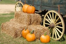 Free Orange Pumpkin On Brown Hay Near Gray Carriage Stock Photo - 88694840
