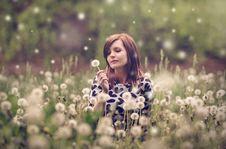 Free Woman Sitting In A Field Of Flowers Stock Images - 88694864