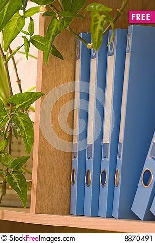 Folders and a liana. Stock Photo