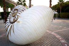 Free Hong Kong Ma Wan Park Spiral Shells Royalty Free Stock Photo - 8871105
