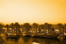 Free Sepia Island Royalty Free Stock Image - 8873046