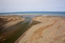 Free Mouth Of River In Puget Sound Royalty Free Stock Photography - 8873137