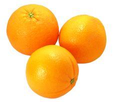 Free Oranges Stock Photo - 8875260