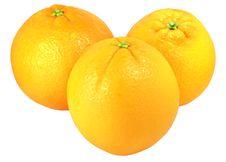 Free Oranges Stock Photography - 8875302