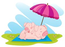 Free Two Pigs Royalty Free Stock Photography - 8877787